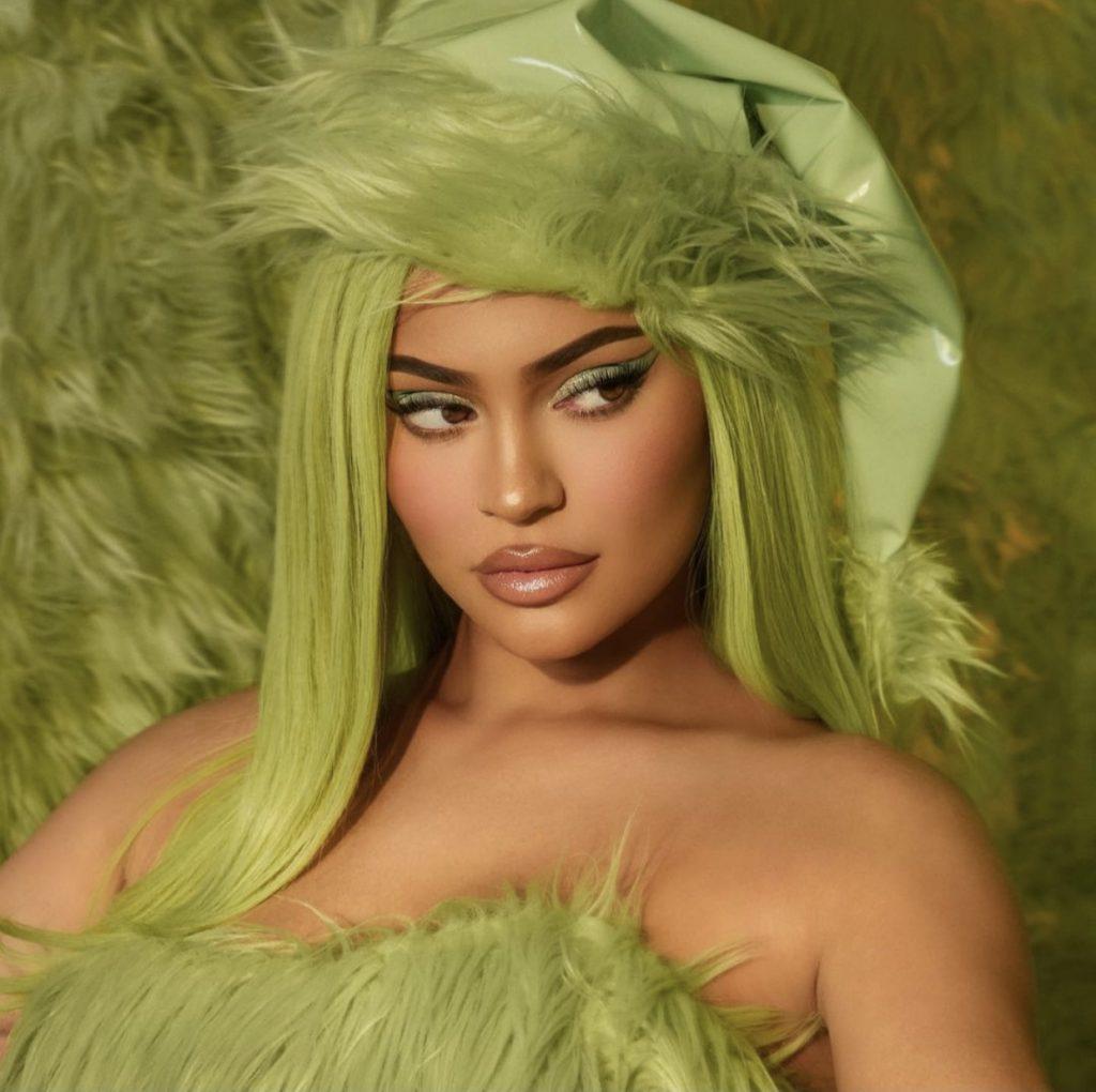 Kylie jenner grinch wig